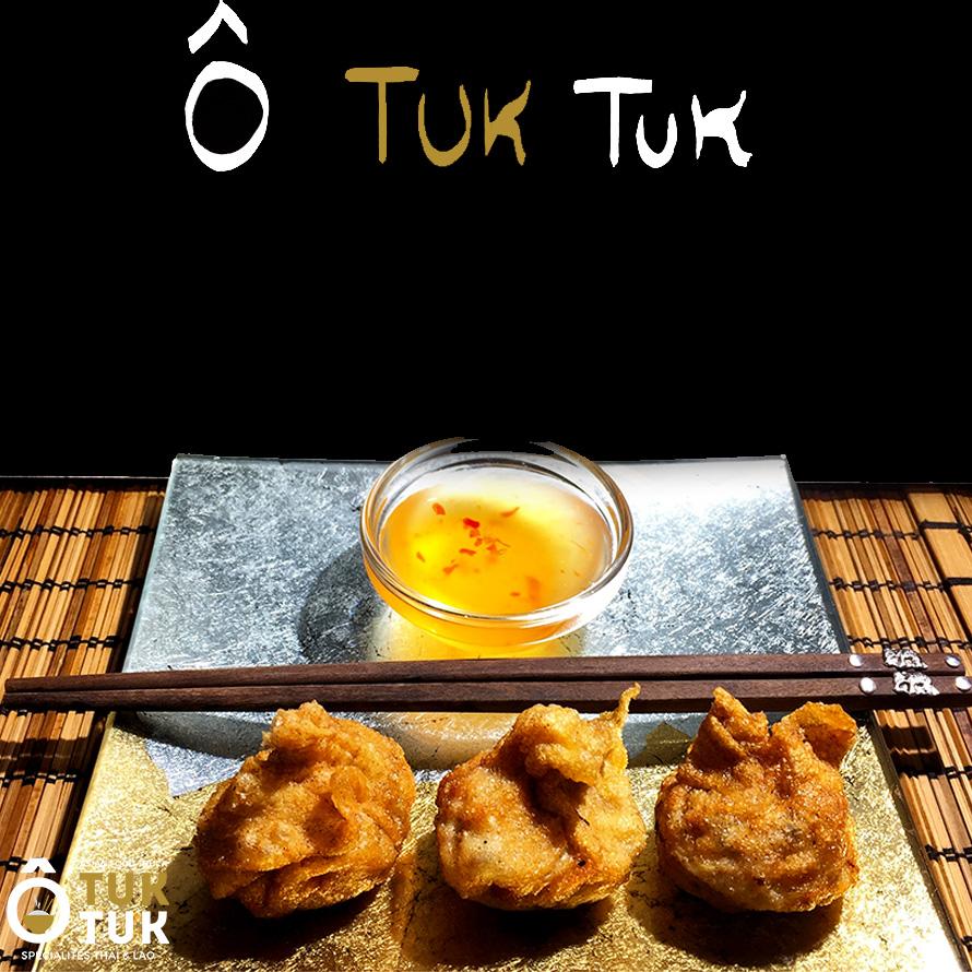 entrée cuisine thai toulouse raviolis frits o tuk tuk